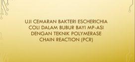 [SKRIPSI] Uji Cemaran Bakteri Escherichia coli Dalam Bubur Bayi MP-ASI Dengan Teknik Polymerase Chain Reaction (PCR)